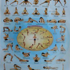 yoga postures Yoga Asanas.