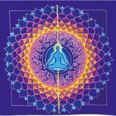Learning The Basics Of Meditation